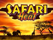 Игровой машина Safari Heat